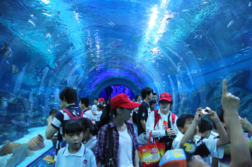 武汉农民工子女畅游极地海洋世界