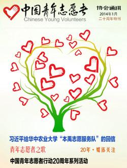 中国青年志愿者协会年度审计报告